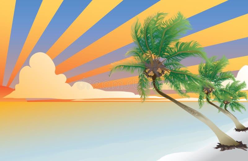 Palma di noce di cocco illustrazione di stock