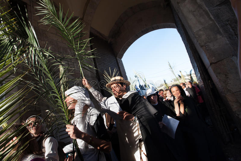 Palma domingo no Jerusalém fotos de stock