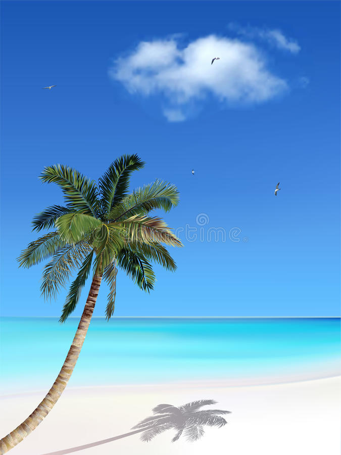 Palma e praia ilustração do vetor