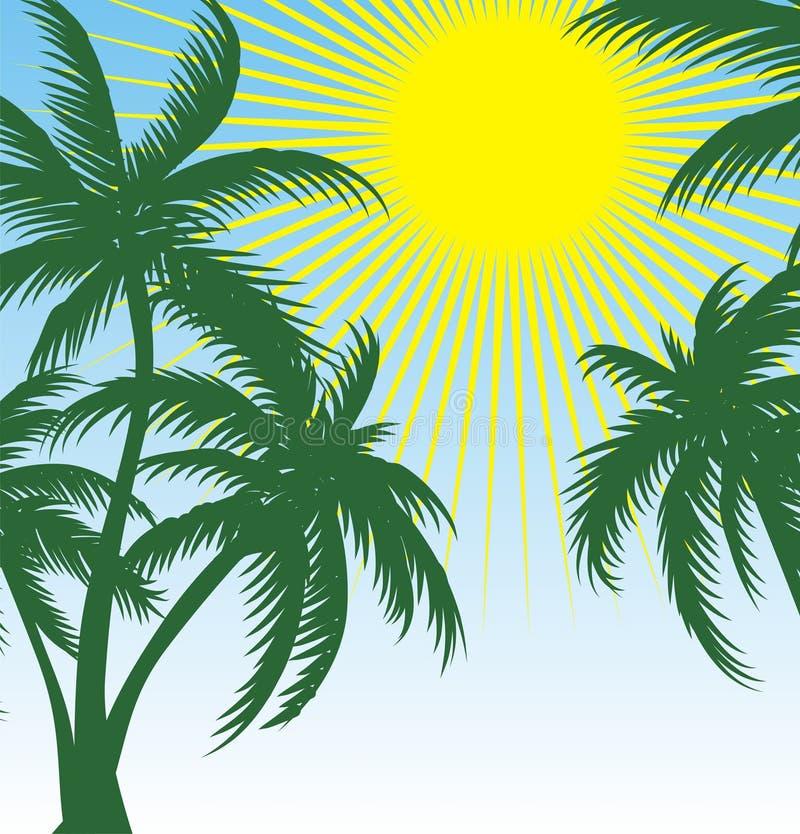 Palma e sol ilustração do vetor
