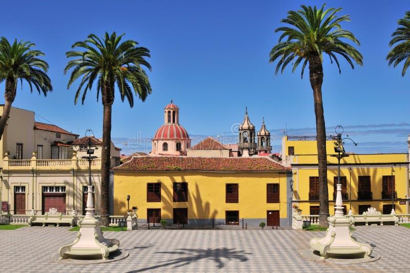 palma kolorowy kwadrat obrazy royalty free