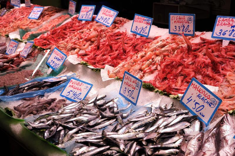 Palma Mallorca, Spain - March 20, 2019 : fresh fish and seafood display for sale in the local fish market stall stock photos