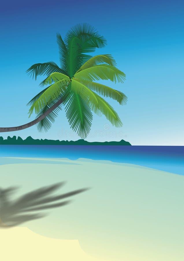 Palma na praia ilustração stock