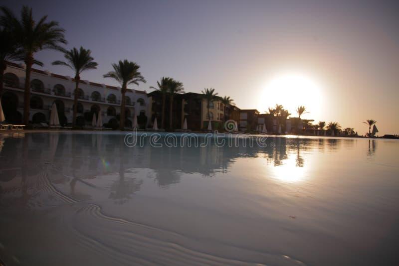 Palma - odpoczynek - basen - weekend obrazy stock