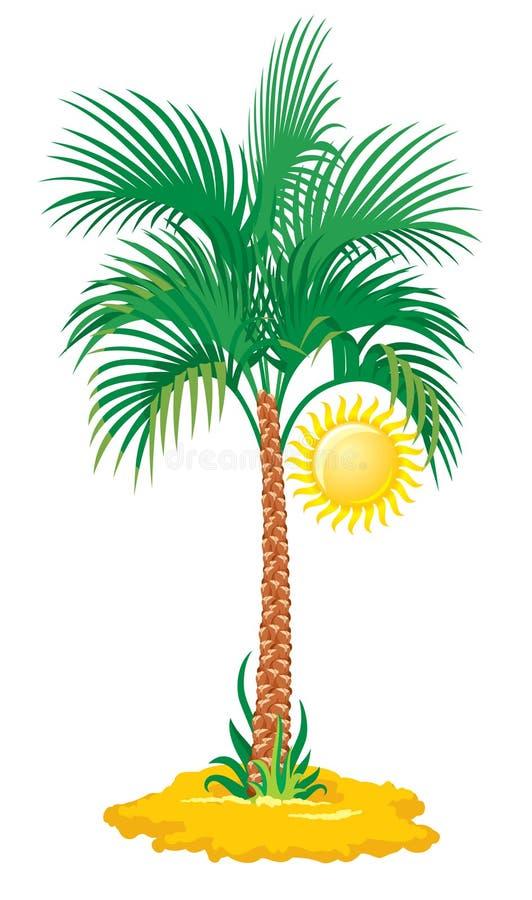 Palma tropicale illustrazione di stock