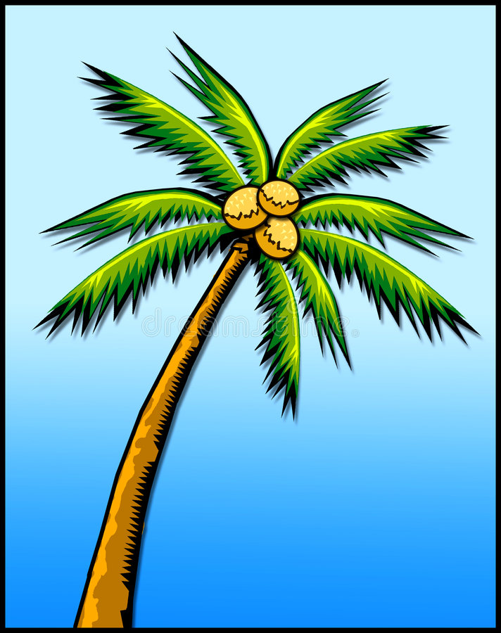 Palma tropicale illustrazione di stock