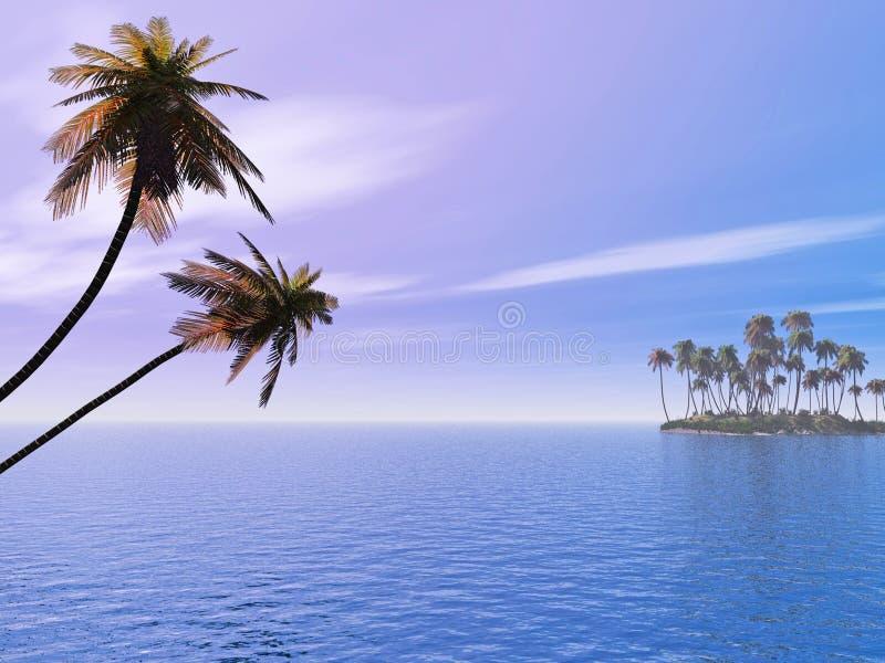 palma wyspy ilustracja wektor