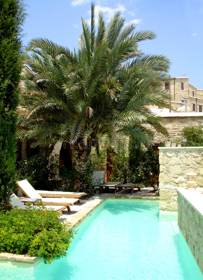 Palma y piscina
