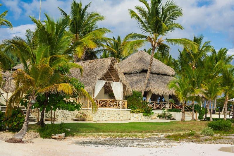 Palma Y Playa Tropical En Paraíso Tropical. Verano Holyday En La República Dominicana, Seychelles, El Caribe, Filipinas, Bahama Imagen de archivo libre de regalías