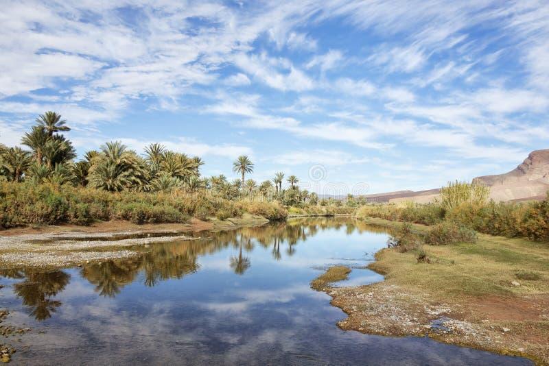 Palma y río con el cielo azul nublado. foto de archivo libre de regalías