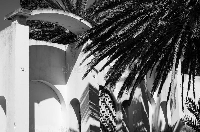 Palmachtergrond Afrika Tunesië nabeul stock afbeeldingen