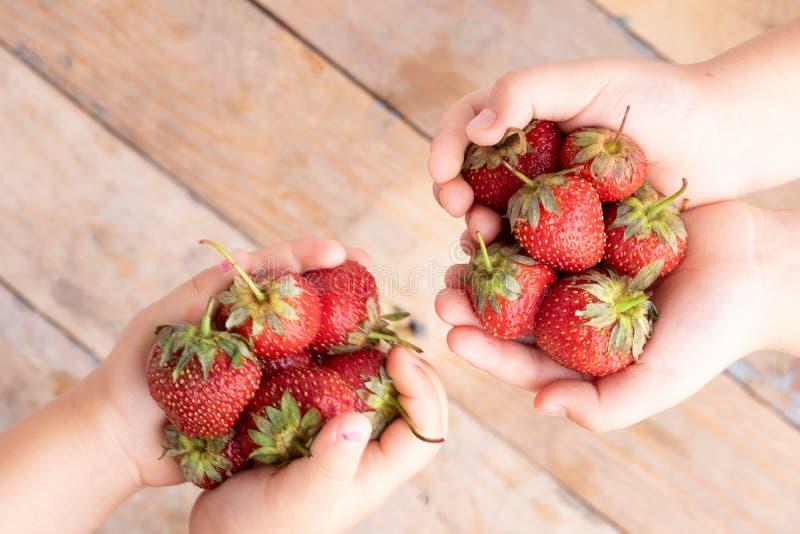 Palmas con las fresas, sobre las manos de los niños, espacio de la copia fotografía de archivo