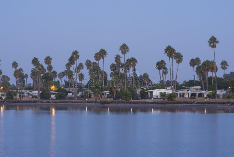 Palmas de fan altas de California en la comunidad del bayside de San Diego fotos de archivo