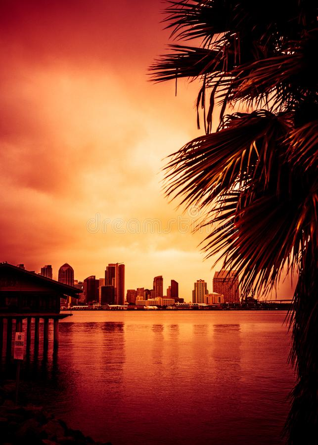 Palmas del horizonte de la puesta del sol de San Diego California imagen de archivo