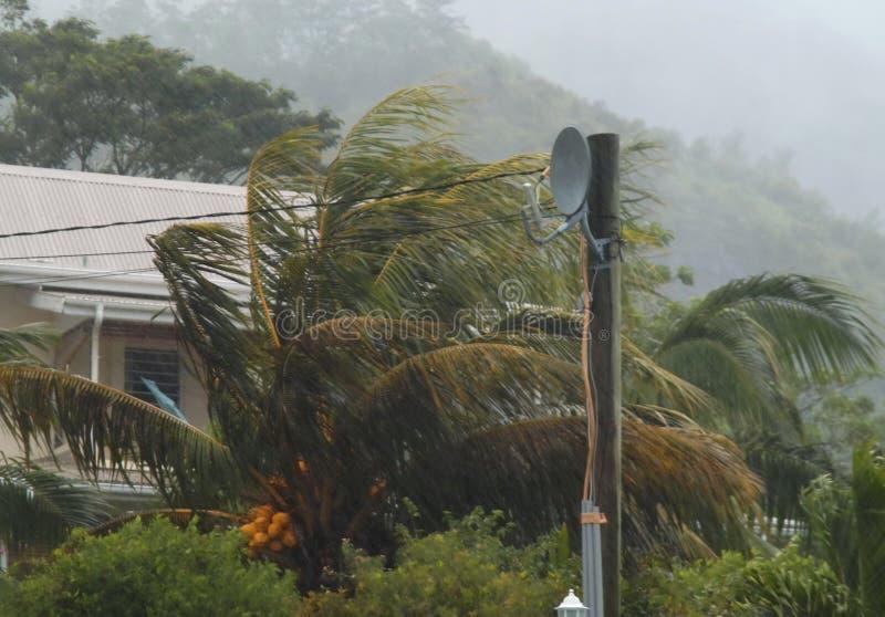 Palmas do furacão, casa. fotografia de stock royalty free