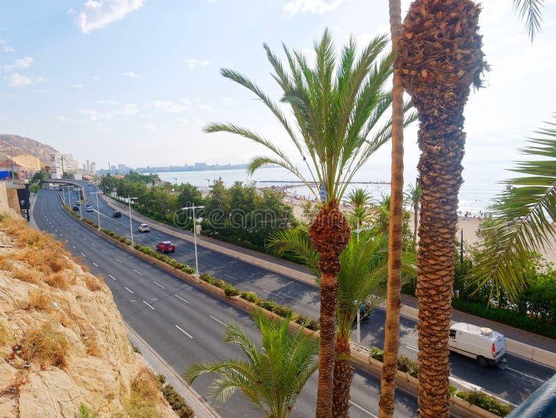 Palmas e praia bonitas em Alicante spain fotografia de stock royalty free
