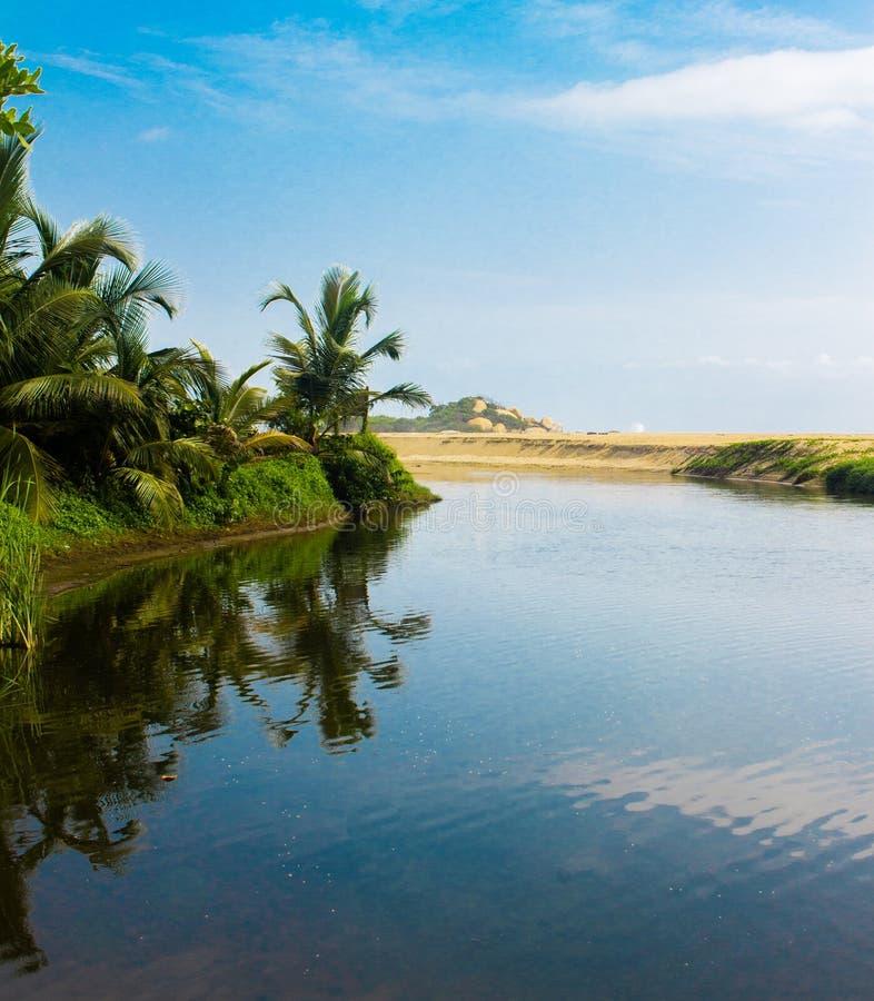 Palmas que reflejan en una laguna azul en Tayrona Costa del Caribe Cabo San Juan de Colombia imágenes de archivo libres de regalías