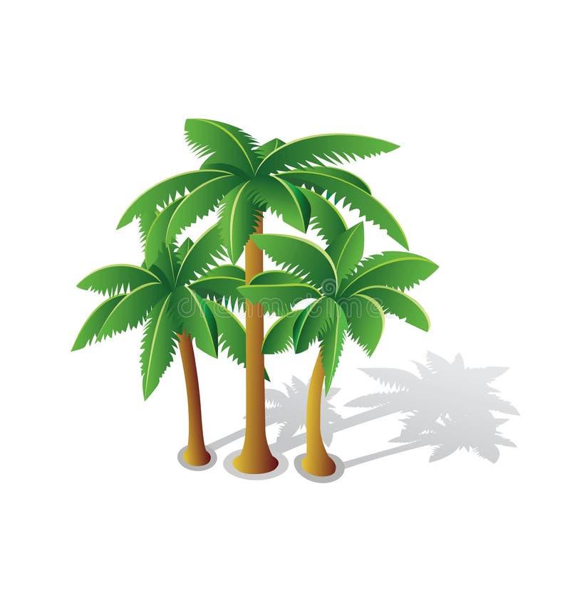Palmas tropicales ilustración del vector