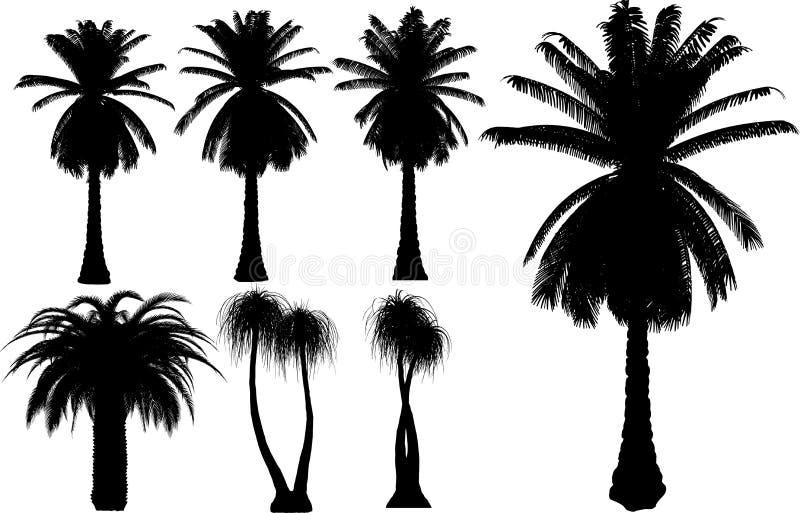 Palmas y árboles del vector libre illustration