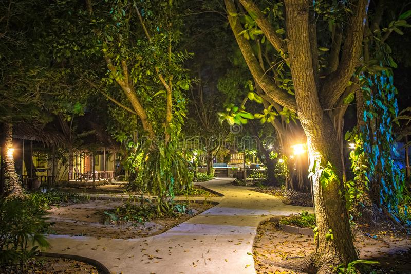 Palmas y árboles tropicales con las lámparas La trayectoria a la piscina en la noche A lo largo de las casas de planta baja y de  fotos de archivo