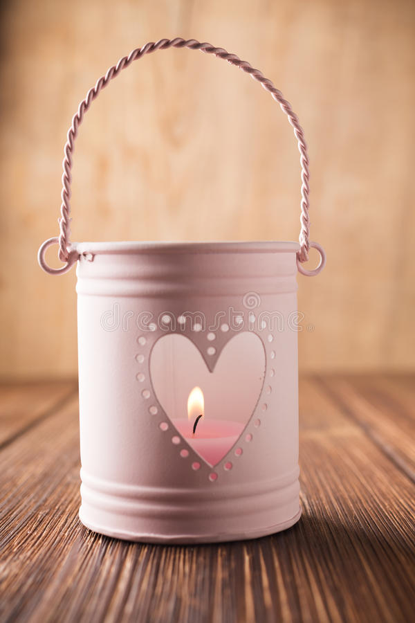 Palmatoria rosada. imagen de archivo libre de regalías