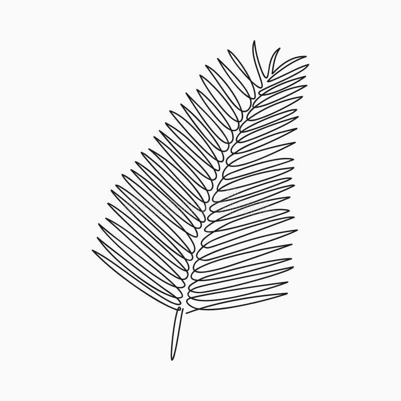 Palmblad - en linje teckning Fortlöpande linje exotisk växt Hand-dragen minimalist illustration vektor illustrationer