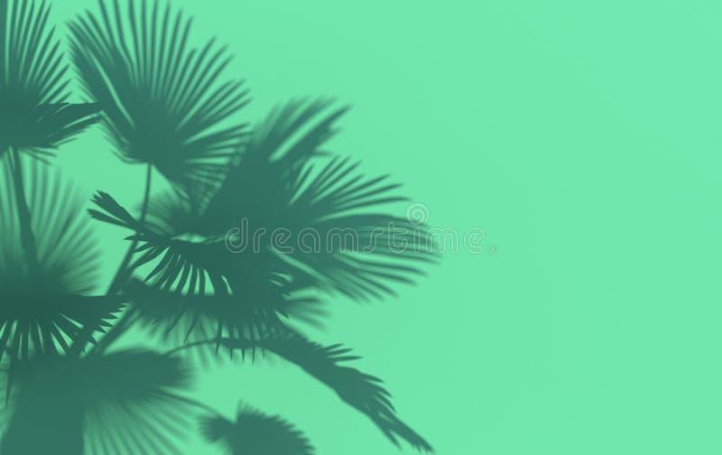 Palmblad gjuter en skugga på turkosväggen Begreppsmässig idérik illustration med kopieringsutrymme framf?rande 3d stock illustrationer