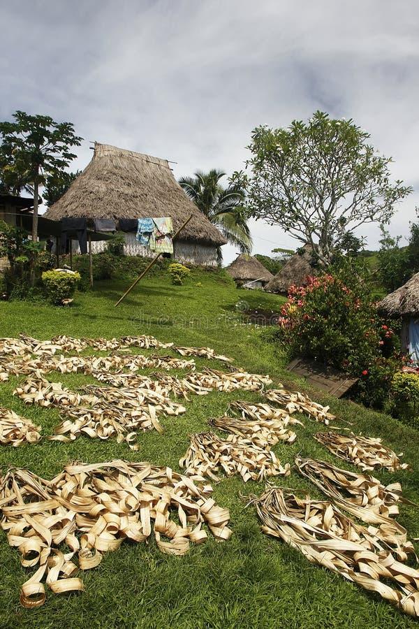 Palmbladen die in Navala-dorp, Viti Levu, Fiji drogen royalty-vrije stock afbeeldingen