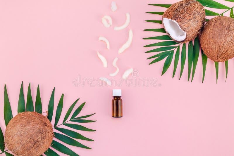 Palmbladen en kokosnoten op roze pastelkleurachtergrond royalty-vrije stock foto