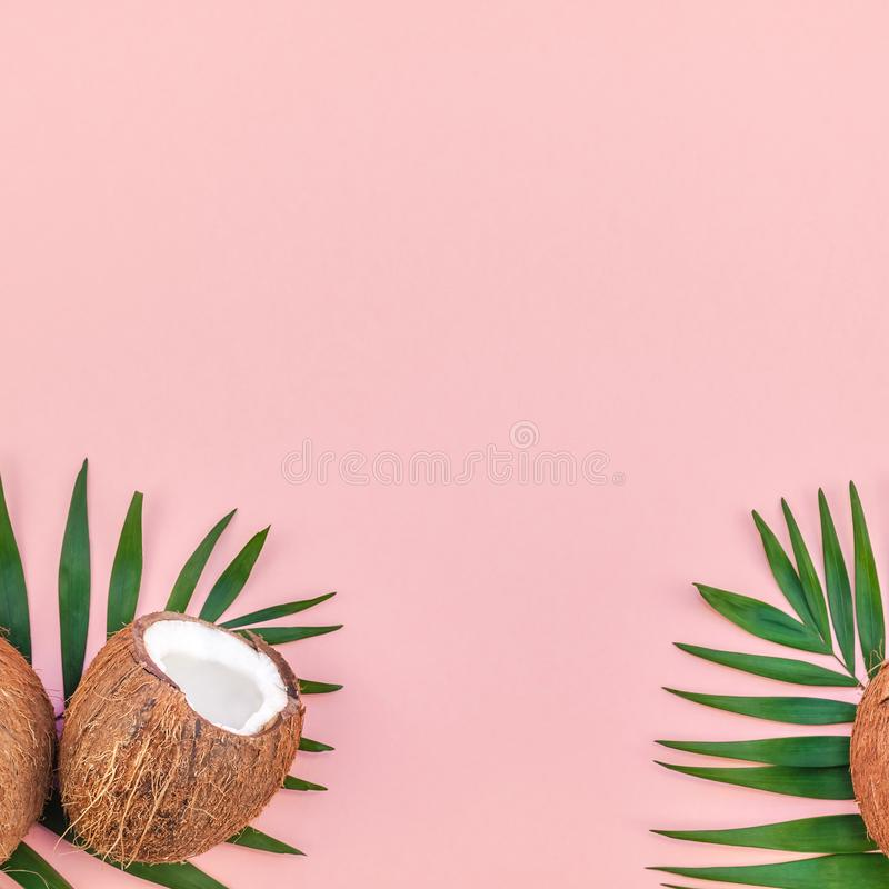 Palmbladen en kokosnoten op roze pastelkleurachtergrond royalty-vrije stock foto's
