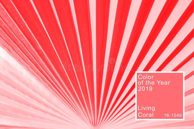 Palmbladtextur som tonas, i att bo korallfärg arkivbild