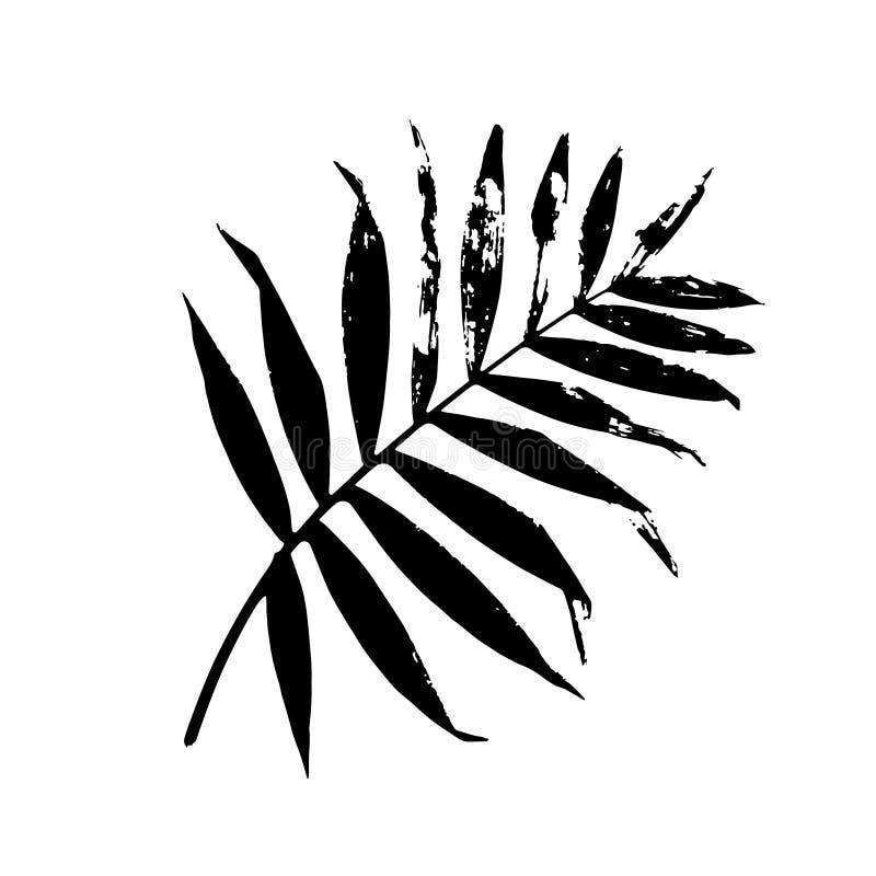 Palmbladvektorillustration vektor illustrationer