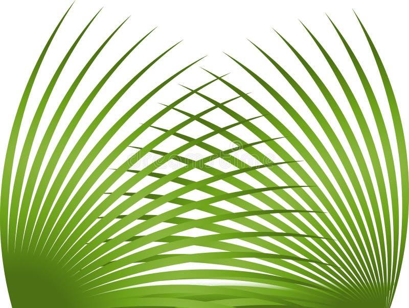 Palmblatt lizenzfreie abbildung
