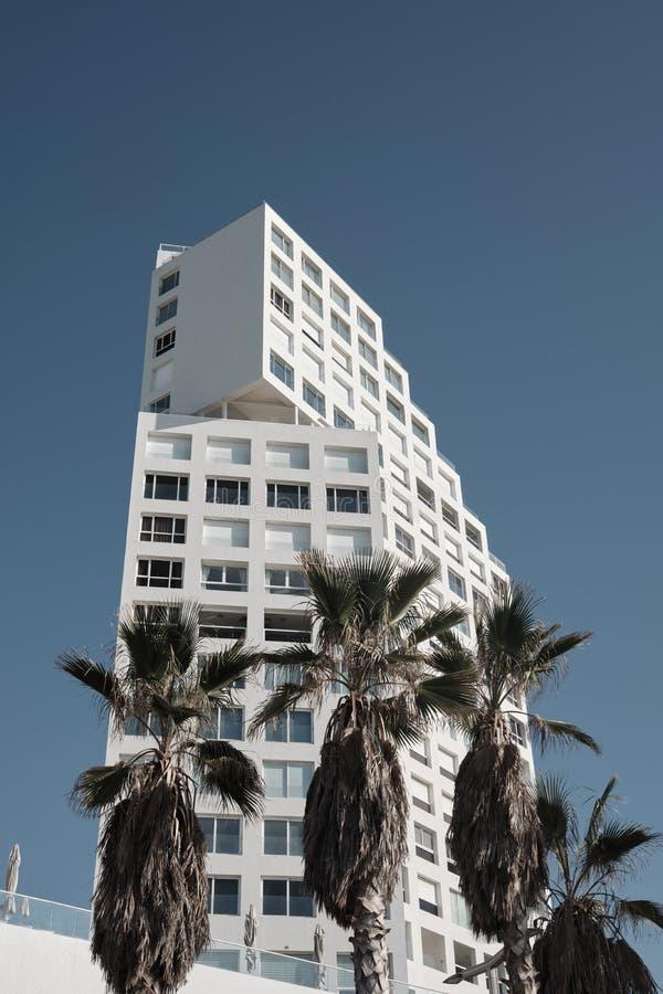 Palmbomen en moderne gebouwen in Tel Aviv, ISRAEL royalty-vrije stock foto's