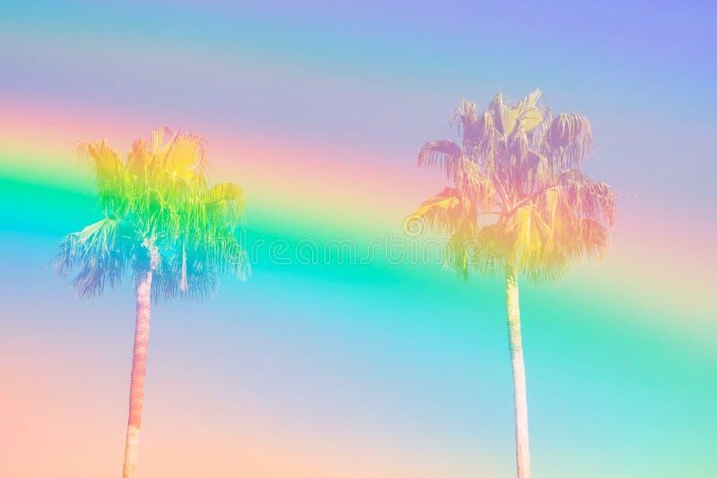 Palme alte sul fondo del cielo tonificato nei colori pastelli della vaniglia dell'arcobaleno Stile funky surrealista Copi lo spaz fotografia stock libera da diritti