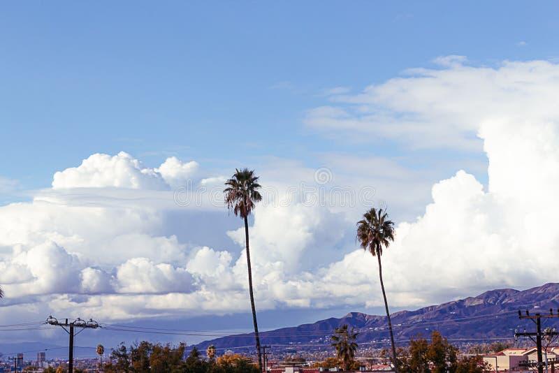Palme con le cime della casa, alberi e cavi elettrici sminuiti da grande cielo blu con le nuvole lanuginose gigantesche fotografia stock