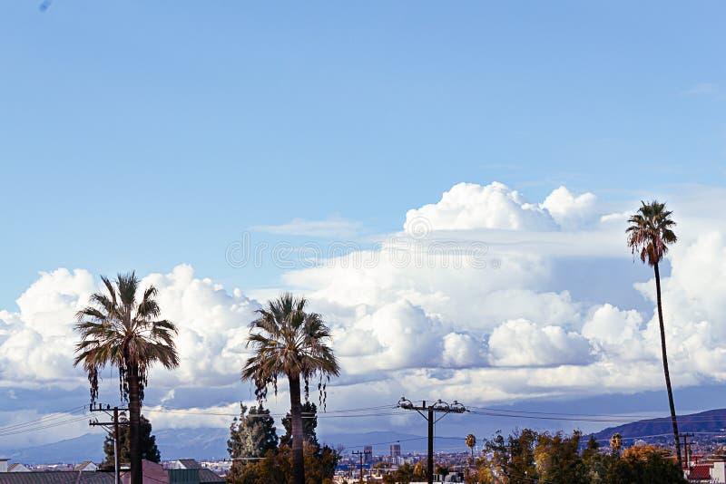 Palme con le cime della casa, alberi e cavi elettrici sminuiti da grande cielo blu con le nuvole lanuginose gigantesche immagine stock