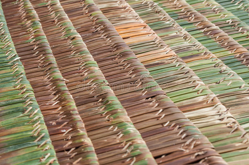 Palme decken Dächer mit Stroh stockfotos