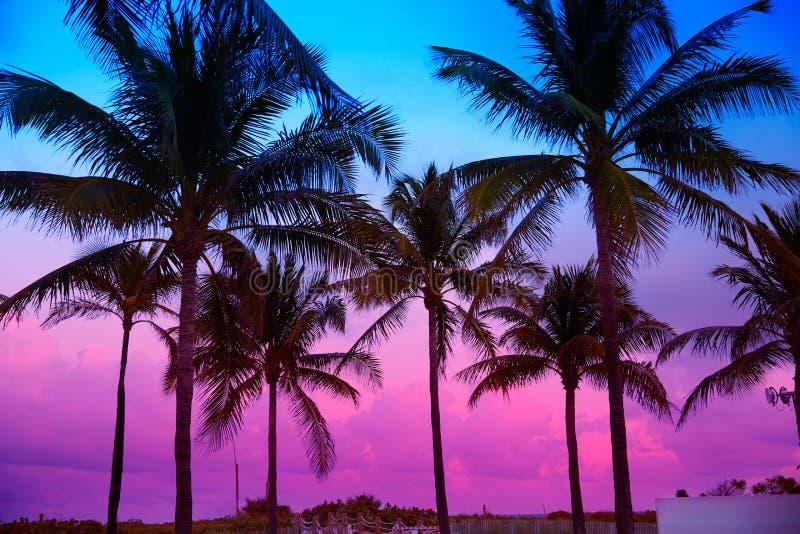 Palme del sud di tramonto della spiaggia di Miami Beach Florida immagini stock libere da diritti