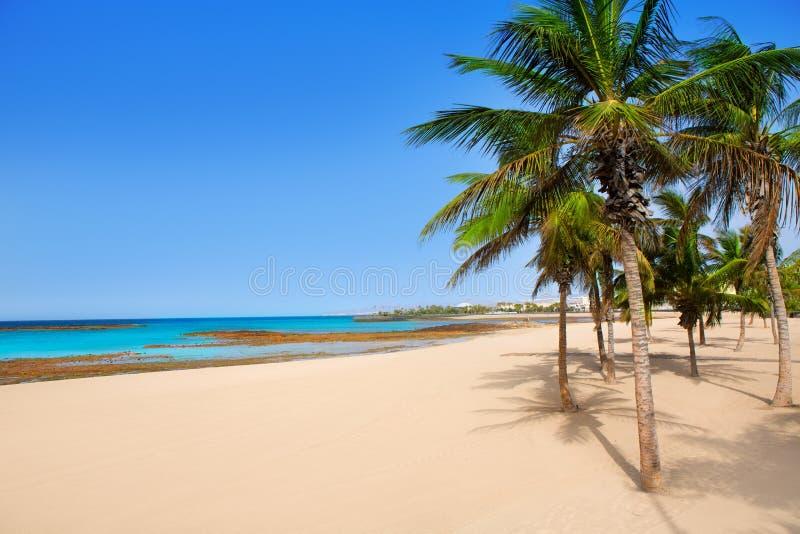 Palme Della Spiaggia Di Arrecife Lanzarote Playa Reducto Fotografia Stock Libera da Diritti