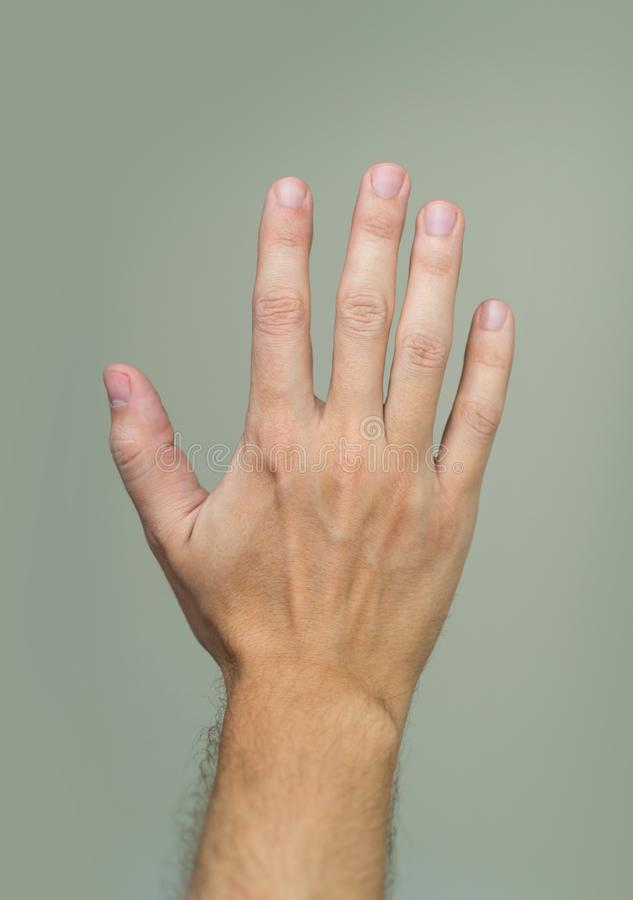 Palme der männlichen Hand lizenzfreie stockfotografie