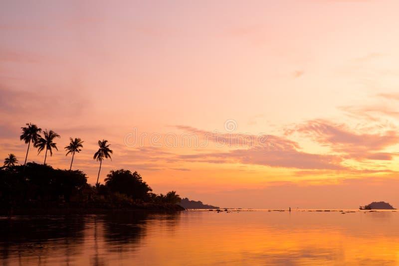 Palme di noce di cocco sulla spiaggia della sabbia nel tropico sul tramonto immagine stock libera da diritti