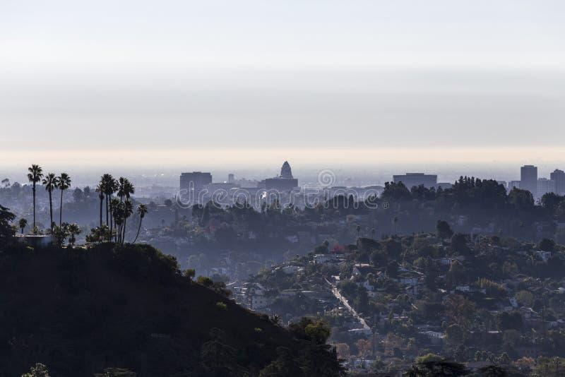 Palme e comune di Los Angeles fotografia stock