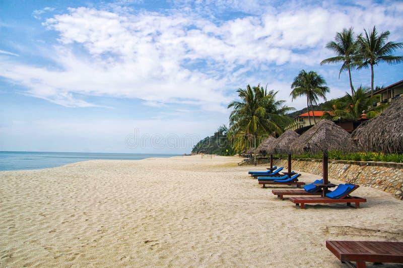 Palme e lettini tropicali della sabbia Migliori stazioni balneari di Kuantan Vacanza di lusso alle acque cristalline ed alle spia immagine stock libera da diritti
