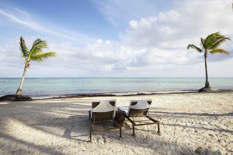 Palme e sedie di chaise longue sulla spiaggia nei Caraibi contro cielo blu con le nuvole bianche fotografia stock