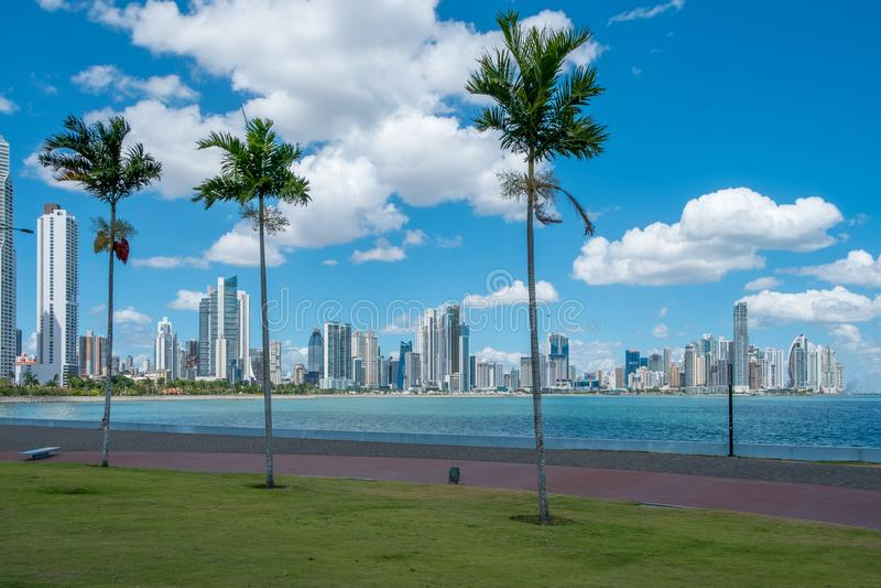 Palme-, Ozean- und Wolkenkratzerstadtskyline - Panama-Stadt - stockfoto