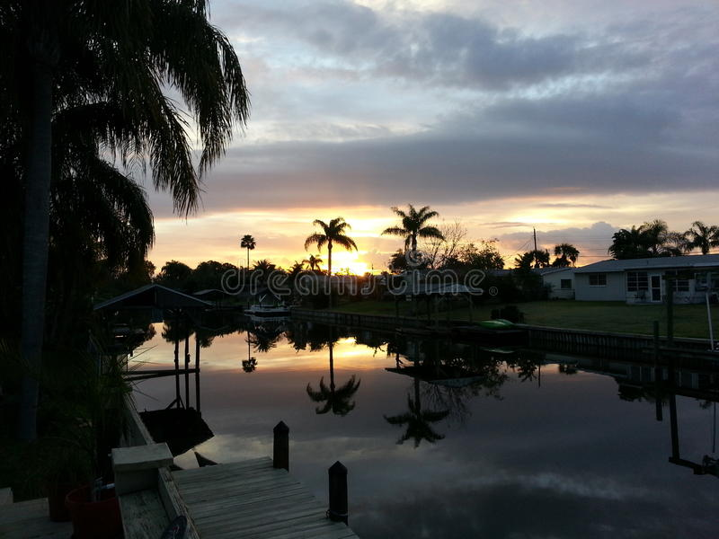 Palme am Sonnenuntergang lizenzfreie stockbilder