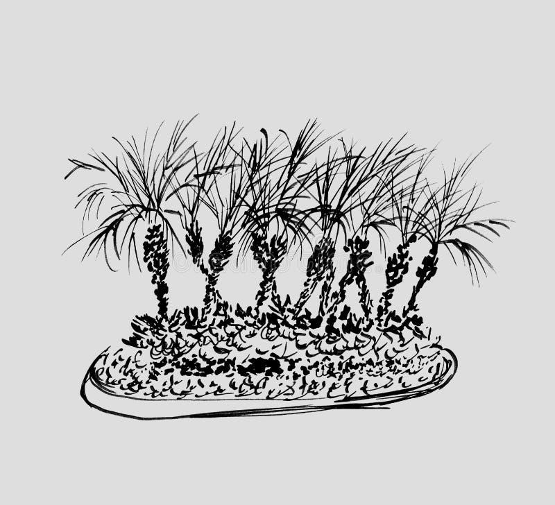 Palme tropicali isolate su fondo grigio chiaro Illustrazione del gruppo dei cocchi Siluette nere Abbozzo disegnato a mano royalty illustrazione gratis