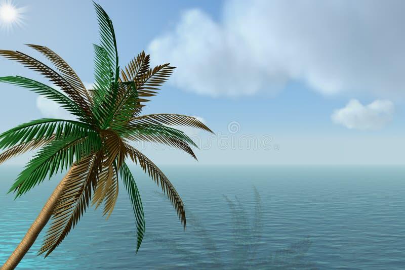 Palme und der Ozean. stock abbildung
