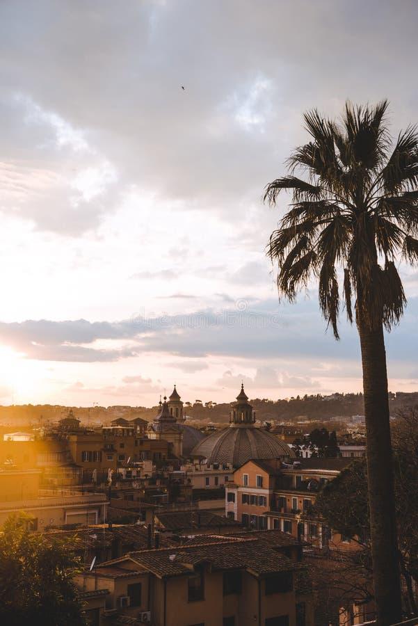 Palme und Gebäude während des Sonnenuntergangs lizenzfreie stockbilder
